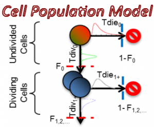 CellPopulationModel